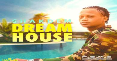 DREAM HOUSE Shakdem