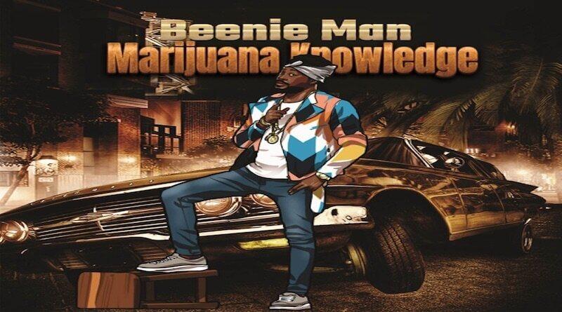 BEENIE MAN - Marijuana Knowledge - Reggae 2021
